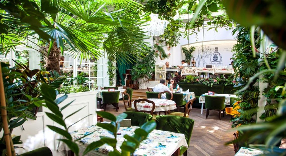 Baczewski Restaurant: a Place to Discover Galician Cuisine in Lviv
