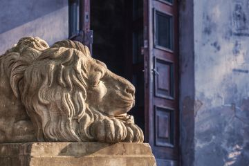 In Search of Lviv Lions: How to Find Them