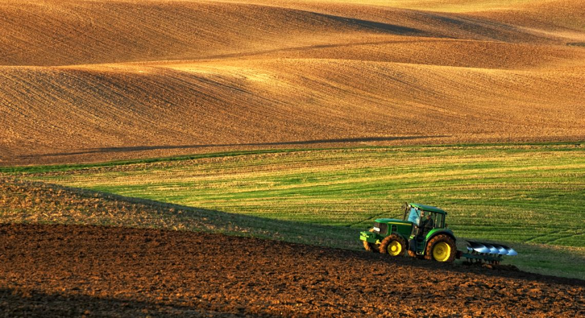 Ukraine Must Become an Agrarian Superstate