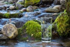 glass of water with stones and waterfall on background