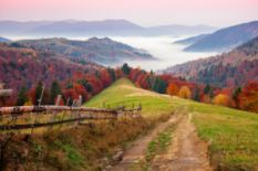 Autumn in the Carpathian Biosphere Reserve