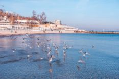 Odesa in winter