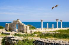 ancient ruins on seashore, gull flying above