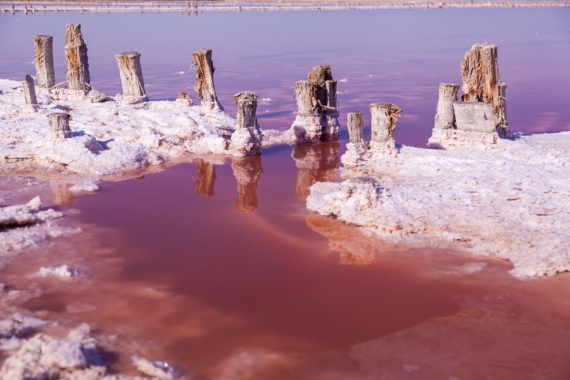 lake with pink water and salt crystals on shore