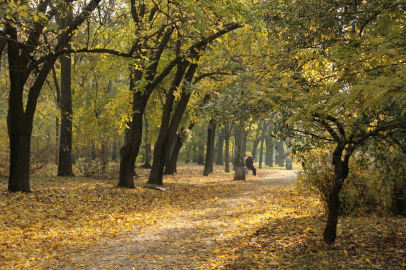 Autumn park in Odesa