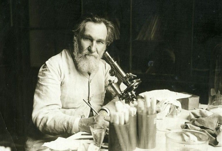 Ukrainian scientist Illia Mechnykov