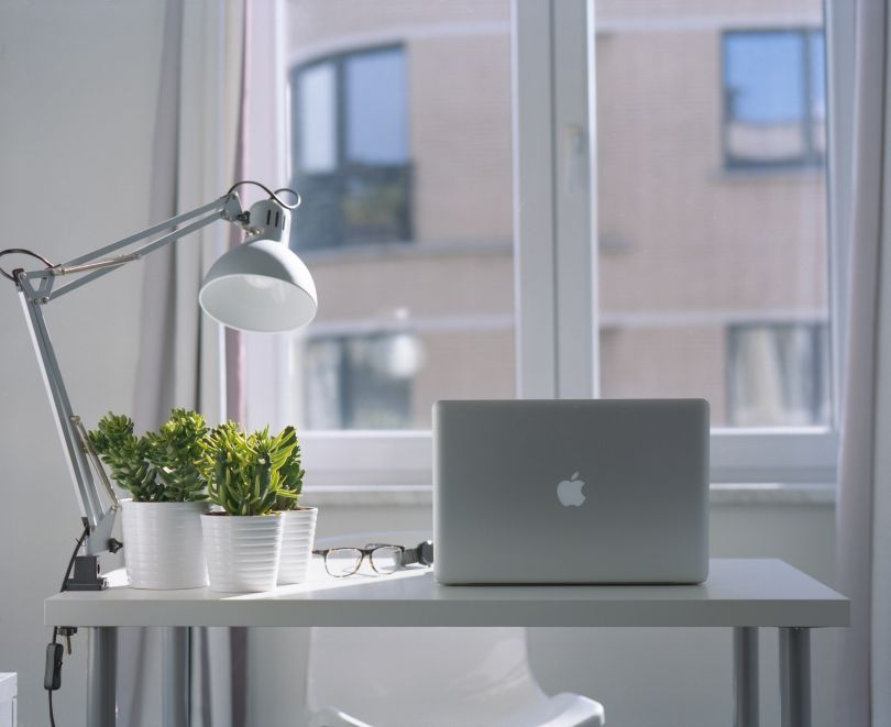 Macbook and plants on the table